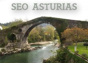 Seo en Asturias